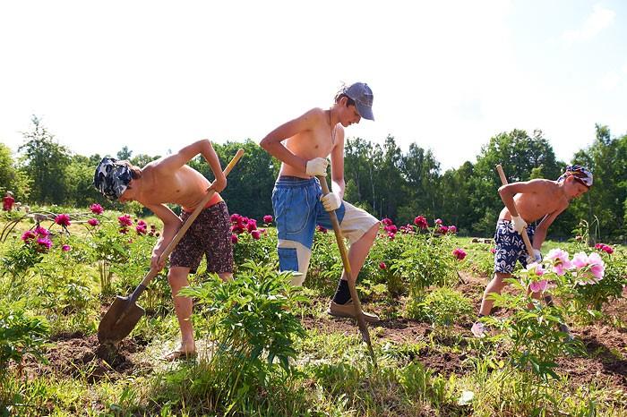 Дети капают огород