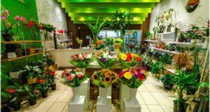 Продажа цветов