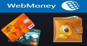 Кошелек Кипер и кредитки