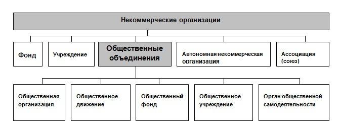 гп коммерческие и некоммерческие организации